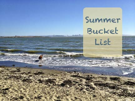 An image of the beach and ocean, box with text that read Summer Bucket List