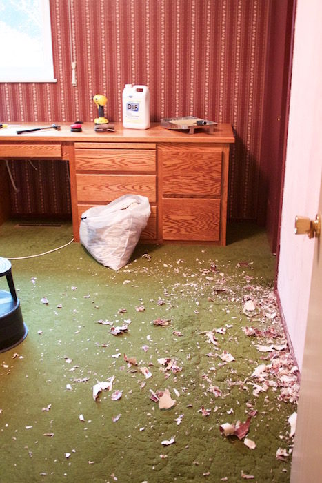 A room with green carpet and maroon papered walls; part of the wallpaper is stripped and the floor is littered with scraps. There are tools scattered around and a garbage bag full of wallpaper.